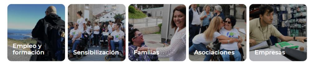 Los contenidos de la nueva página web de Federación ASPACE GALICIA está orientados a los diferentes destinatarios